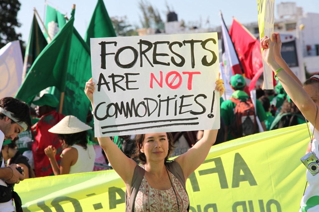 Protest against proposed programs like REDD+